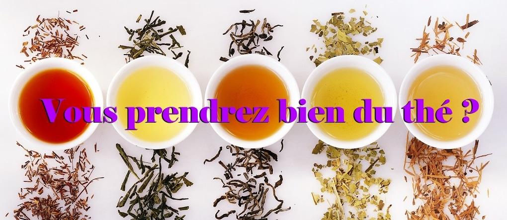 differents types de thé